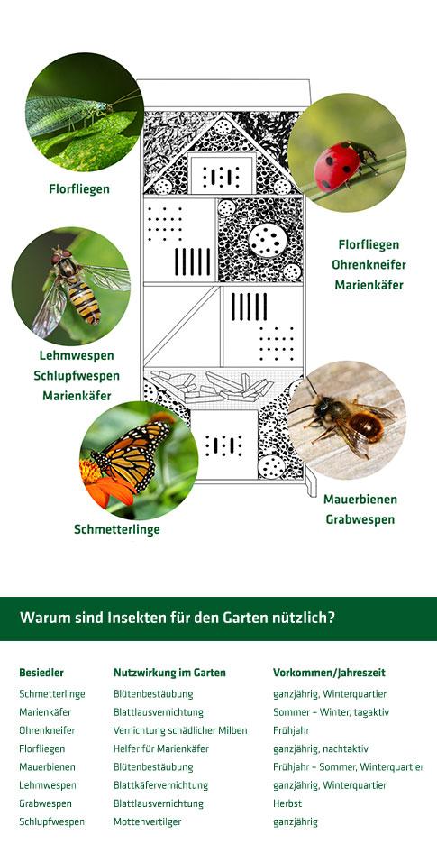 90539_Insektenhotel_Grafik-V3-2