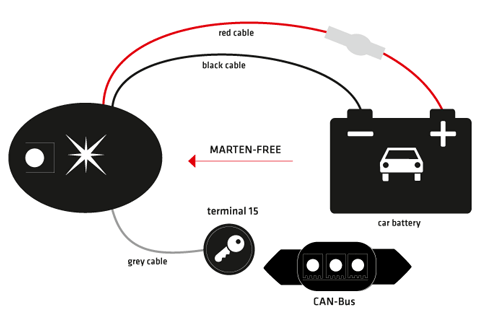 78420_marder-katzen-frei_grafik_web_en