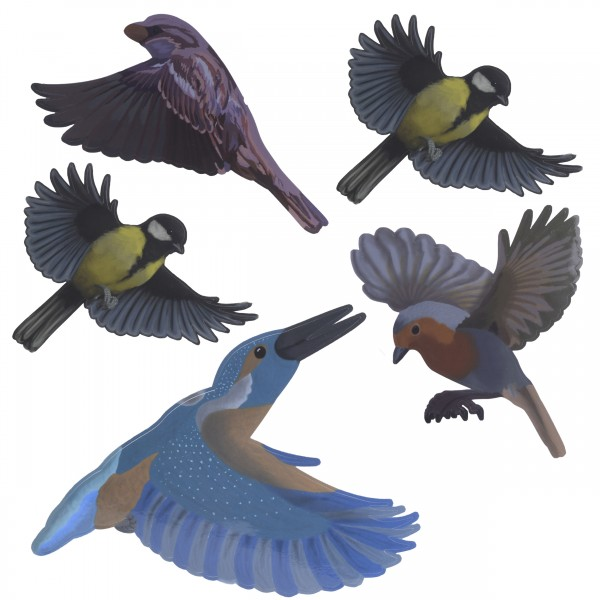 Anti Collision Bird Stickers - Native Birds