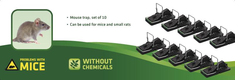 Snap Trap - Set of 10