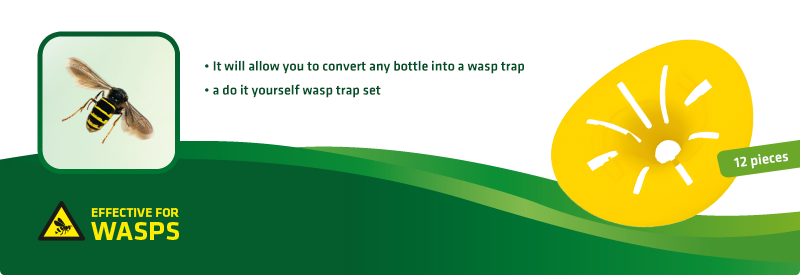 DIY Wasp Trap, set of 12