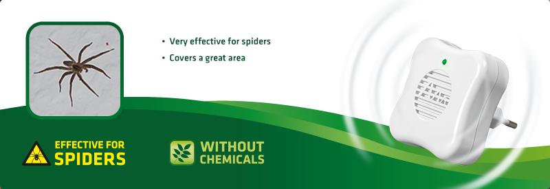 Spider-Repellent